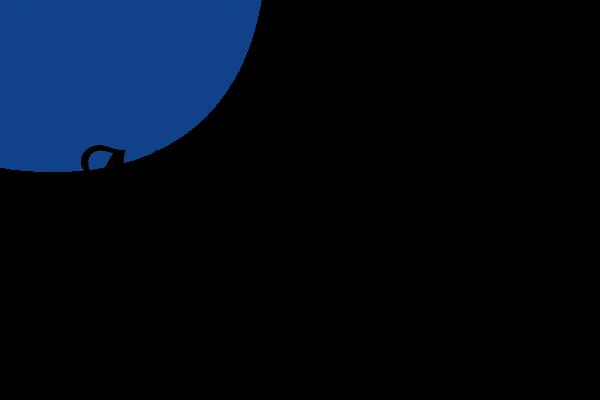 recherche graphique logo marianna